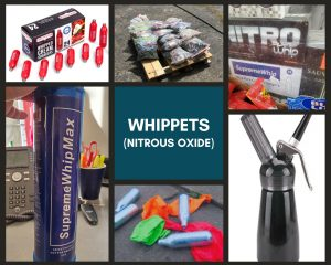 whippets collage drug glossary